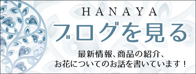HANAYA|北九州・小倉・門司・八幡・大名・天神・薬院・中洲・西中洲・博多・中央区・天神・博多区のお花屋さん ブログ
